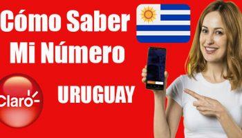 cómo-saber-mi-número-claro-uruguay